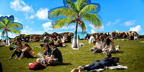 Students sitting on grass with a photoshopped background of palm trees