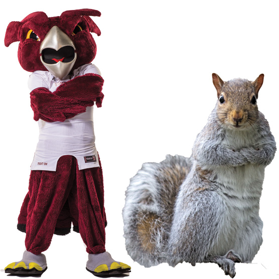 Hooter the Owl and a squirrel
