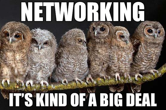 Networking it's kind of a big deal