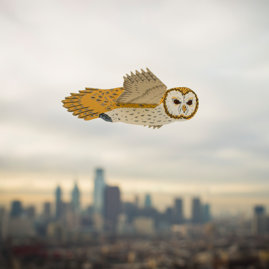 An Owl flying over the Philadelphia skyline