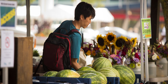 A person looking at flowers and watermelon at a farmers market.