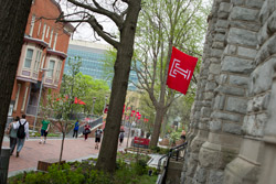 Temple flags flying on campus