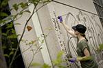 Caroline Rothwell creating mural